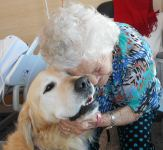 PAWs Pet Therapy
